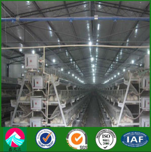 China Supplier Steel Structure Poultry House pictures & photos
