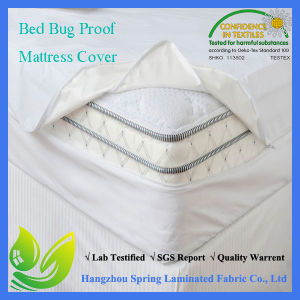 Anti Allergy Bed Bug Protection Mattress Cover pictures & photos