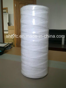 Thread Wrapped Filter Cartridge for Liquid Tyc-Lfb250 pictures & photos