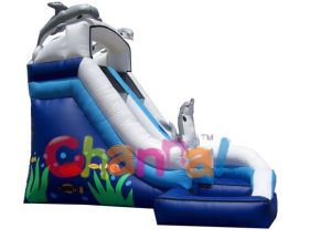Dolphin Inflatable Water Slide/Inflatable Water Slides for Sale Bb061 pictures & photos