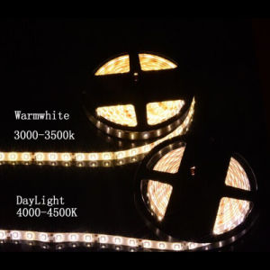 3528 12V White Custom LED Strip pictures & photos