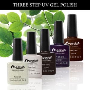 Long Lasting Pure Gel Colour UV Gel Polish 10ml UV/LED Gel Polish pictures & photos