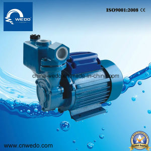 0.37kw/ 0.55HP Dbz60 Clean Water Pump for Domestic Use 1inch Outlet pictures & photos