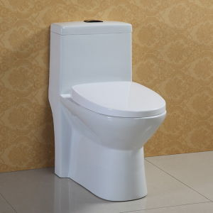 One Piece Wc Toilet, Water Closet (AT-570)