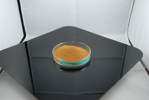 X-Humate Fa Series Fulvic Acid 80%Min Powder pictures & photos