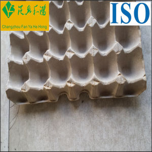 Egg Tray Mould/Recycled Pulp Paper Egg Trays pictures & photos