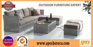 Outdoor Furniture Rattan Sofa Garden Furniture AC1301 pictures & photos