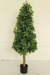 Artificial Plants and Flowers of Schefflerra Gu-Mx-Schefflerra-80cm pictures & photos
