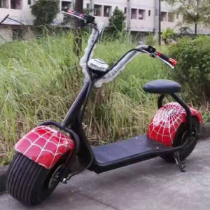 Classic Hot Sell 1000W 60V 20ah OEM Logo Electric Motorcycle pictures & photos