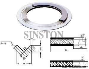 Kammprofile Gasket, Serrated Gasket with Graphite Face (SIN104)