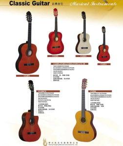 Classic Guitar, Student Guitar