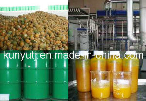 Pineapple Juice Concentrate with High Quality pictures & photos