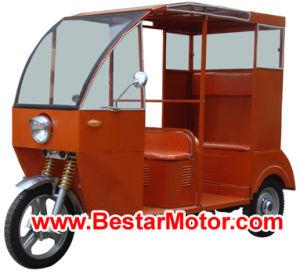 800w/1000w Electric Rickshaw (TW-030-C)
