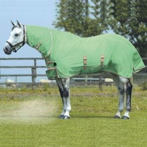 Green Breathable Summer Polycotton Horse Rug (SMR3218) pictures & photos