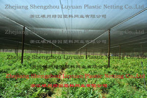 Shade Net - 2, Agriculture, Sun Shade, Wire Mesh, Shading, Net, Shadenet pictures & photos