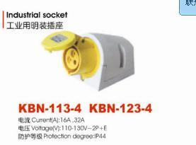 Industrial Socket (KBN-113-4)