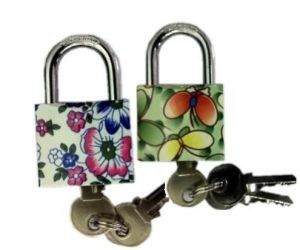 Htp/Wtp Padlock with Pattern (1110) pictures & photos