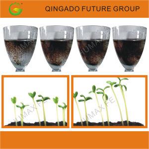 Marvel Humic Acid Liquid Organic Fertilizer pictures & photos