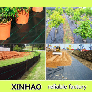 Eco-Friendly Ground Cover Fabric with PAHs Test pictures & photos