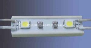 5050 SMD LED Module for Channel Letter (PL-S2W-5050)