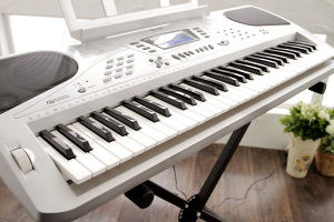 61-Keys Electronic Keyboard (650B)