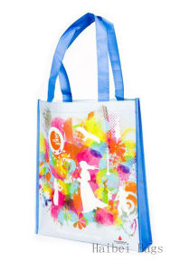 Portrait Laminated Promotional Eco Retail Bag (hbnb-402) pictures & photos
