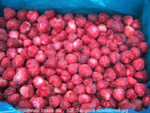 Frozen / IQF Strawberries