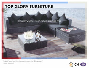 Outdoor Leisure Rattan Sofa Combination (TG-057) pictures & photos