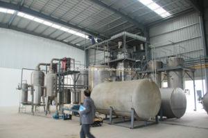 Made in China-Euphoria Longan Extract/Dimocarpus Longan Extract/ Longan Extract pictures & photos