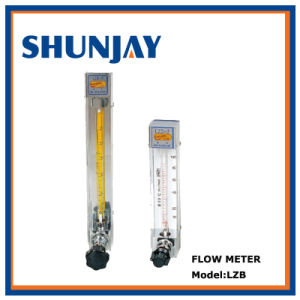 Hot Sales Glass Tube Rotameter with Valve pictures & photos