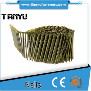 Panel Sheathing and Fencing Flat /Conical Coil Nails pictures & photos