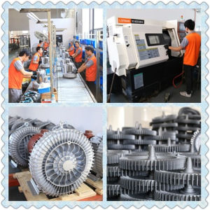 The Regenerative Blower of China in 2017 pictures & photos