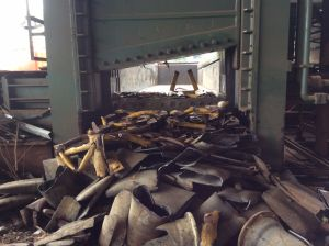 Q91y Heavy Duty Shear Machine pictures & photos