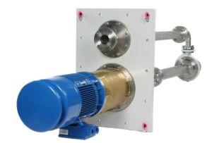 Vertical Cantiliver Pump pictures & photos