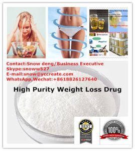 Supply 99% Bodybuilding Prohormones Belviq Lorcaserin Hydrochloride for Weight Loss CAS 846589-98-8 pictures & photos