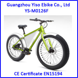 350W Powerful Electric Fat Bike with Triangle Battery Case pictures & photos