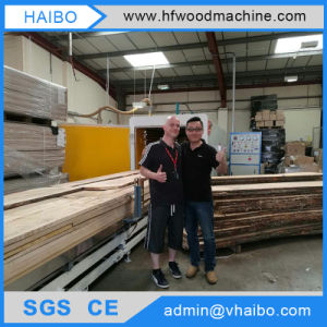 Hf Vacuum Dryer Woodworking Machine with ISO SGS