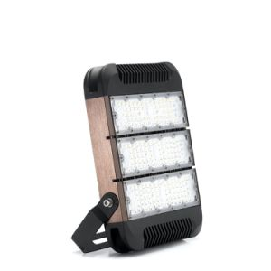2017 New Design IP65 120W LED Flood Light Driverless IC Driver AC85-300V (40W 80W 120W 160W Tunnel Light) pictures & photos