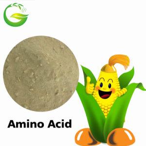 Organic Fertilizer Soluble Amino Acid pictures & photos
