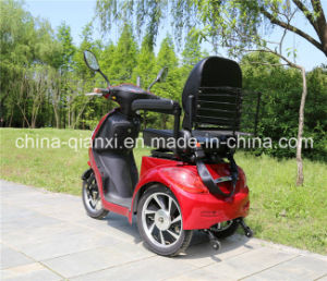 Hub Motor Handicapped Motorcycle with Ce pictures & photos