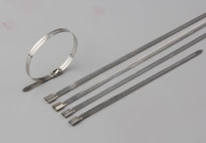Usu304 Stainless Steel Cable Ties 100PCS/Bag 7*500mm pictures & photos
