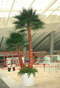 Artificial Plants and Flowers of Big Fan Palm Gu543500336236134479087mhb pictures & photos