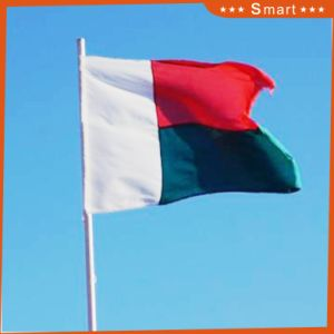 Custom Waterproof and Sunproof National Flag Madagascar National Flag pictures & photos