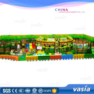 Super Big Size Hot Sale Amusement Park Kid Indoor Playgroud pictures & photos