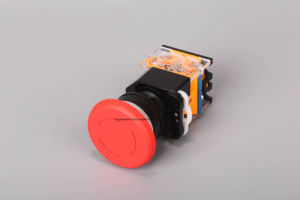Keyway Push Button Switch with Red and Green Colors pictures & photos