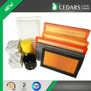 OE Quality Auto Air Filter with ISO/Ts16949 Certified pictures & photos