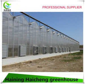 Plastic Greenhouse for Hydroponics System pictures & photos
