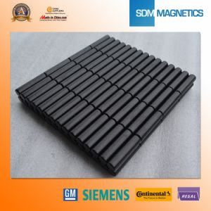 Free Samples ISO/Ts 16949 Certificated Neodymium Multipole Magnet pictures & photos