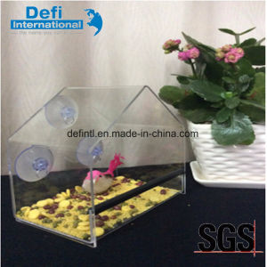 Hot Sell House Shape Acrylic Bird Feeder with Suction Cup pictures & photos