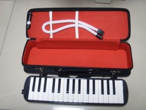 32k Melodica pictures & photos